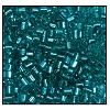 2 Cut Bead (2x) #2200 11/0 67210 Sea Foam Green Transparent Silver Lined (1/2 Kilo)