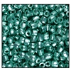 3 Cut Bead (3x) #2300 9/0 18558 Light Green Metallic (Terra) (1 Bunch)