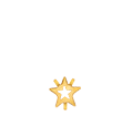 Swarovski Star Fancy Stone Settings: 4745S 5mm