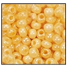 Seed Bead #2100 11/0 47185 Cream Opaque Ceylon (1/2 Kilo) - CLEARANCE