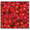 Seed Bead #2100 6/0 94190 Red Opaque Iris (1/2 Kilo) - CLEARANCE