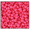 Seed Bead #2100 10/0 16A77 Terra Intensive Hot Pink (1/2 Kilo)