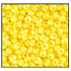 Seed Bead #2100 10/0 16A86 Terra Intensive Yellow (1/2 Kilo)